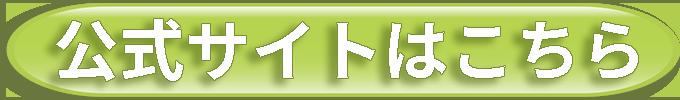 剣道上達革命公式サイト